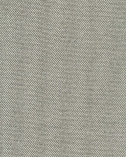 FF-20602 CENTURIA in silver lining Fortuny Wool