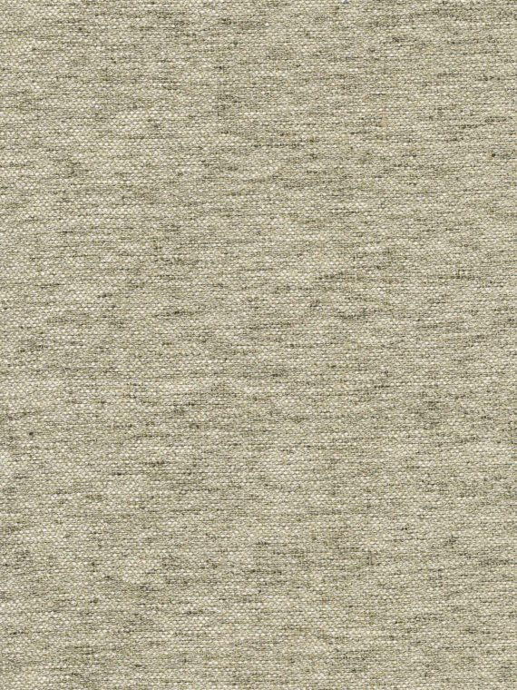 FF-20803 BARENA in elkhound Fortuny Wool