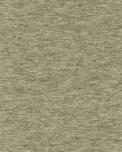 FF-20804 BARENA in lichen Fortuny Wool