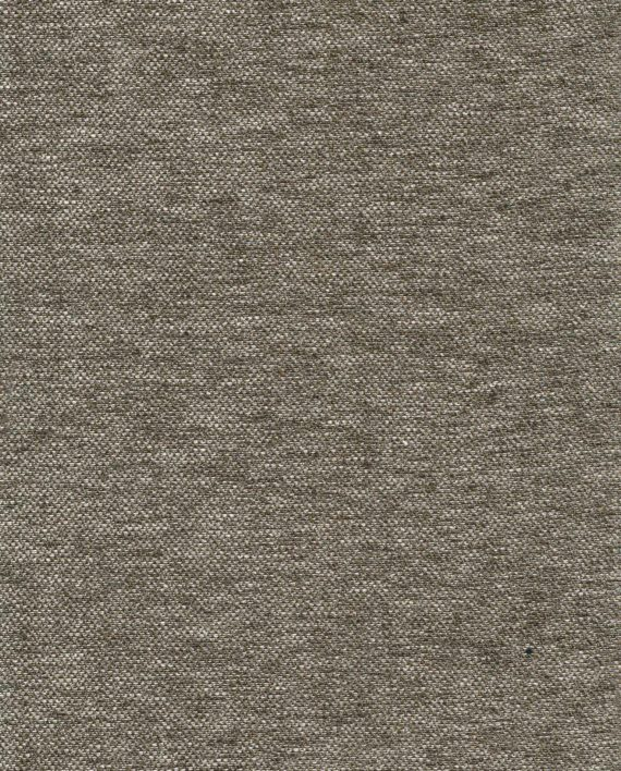 FF-20809 BARENA in quill Fortuny Wool