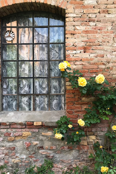 Fortuny-Venice-Window-Roses